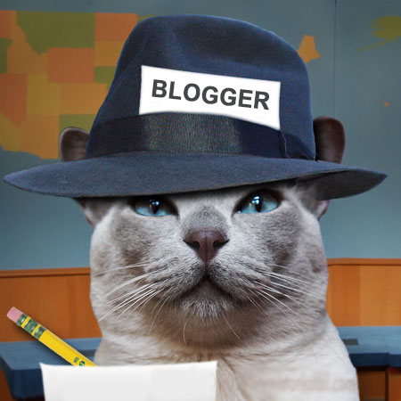 Blogger-Cat-Second-Featured-Image